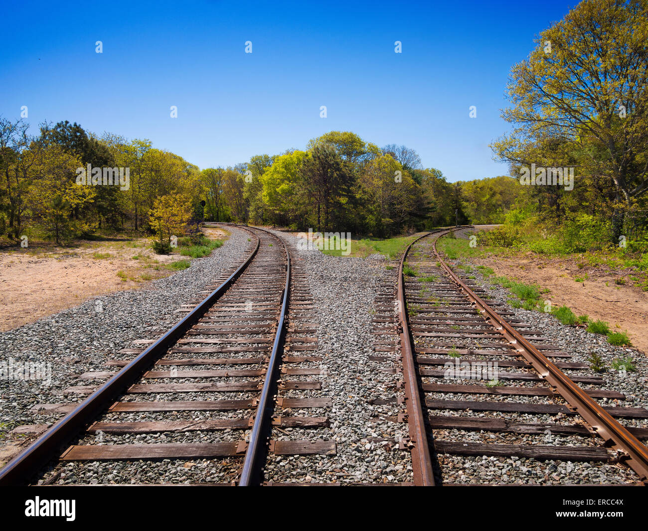 Railroad tracks splitting left and right as a concept for life's choices - Stock Image