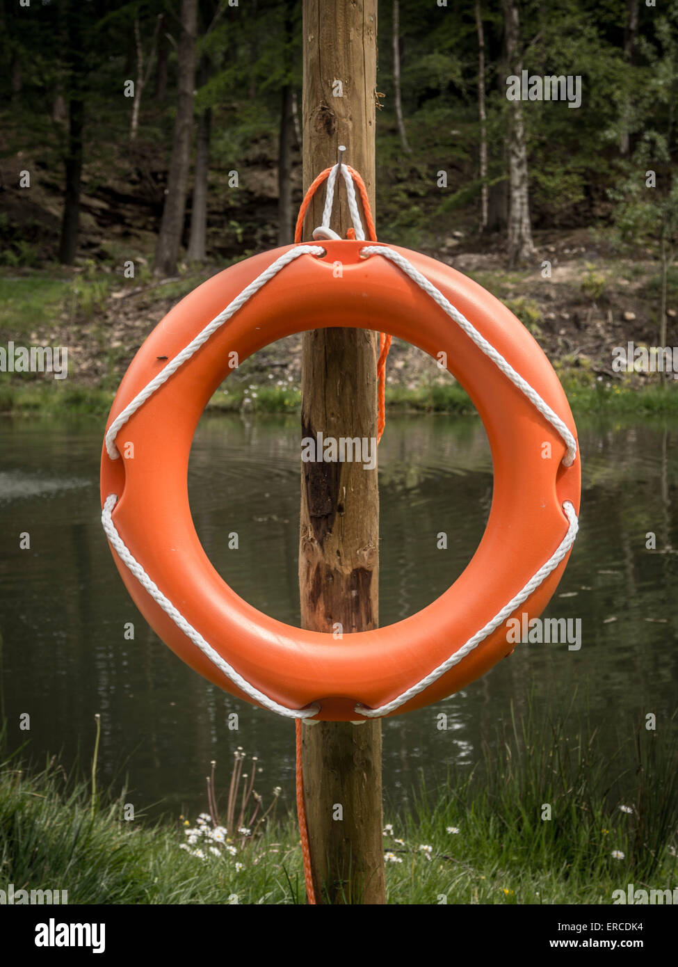 Lifebelt at edge of water - Stock Image
