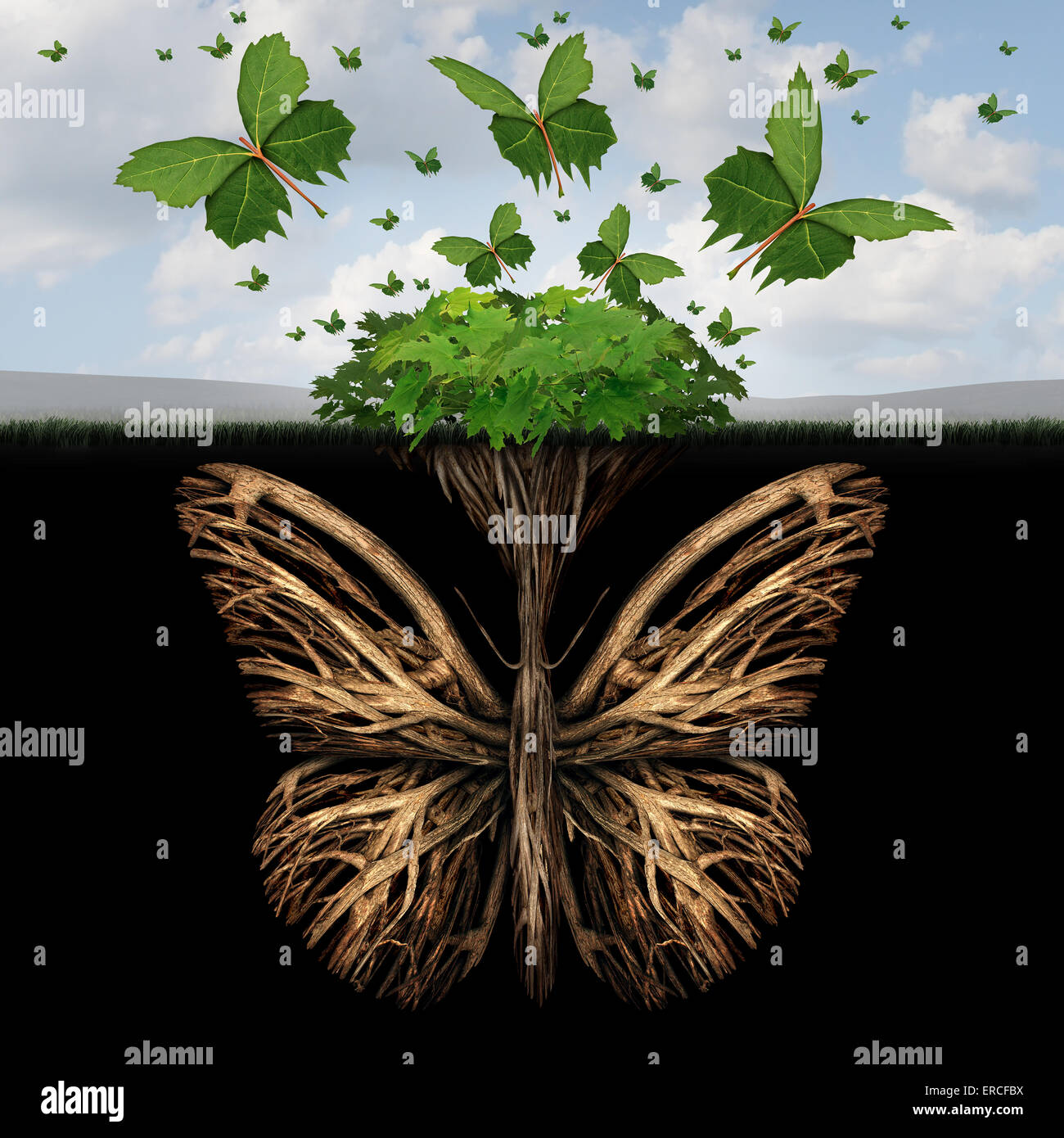 Strong foundation concept as the roots of a plant shaped as a butterfly and the leaves of a bush in the shape of - Stock Image