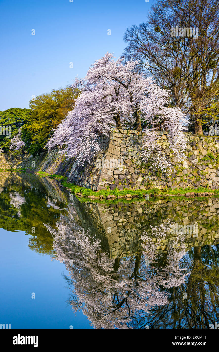 Hikone Castle outer moat wall in Hikone, Japan. - Stock Image