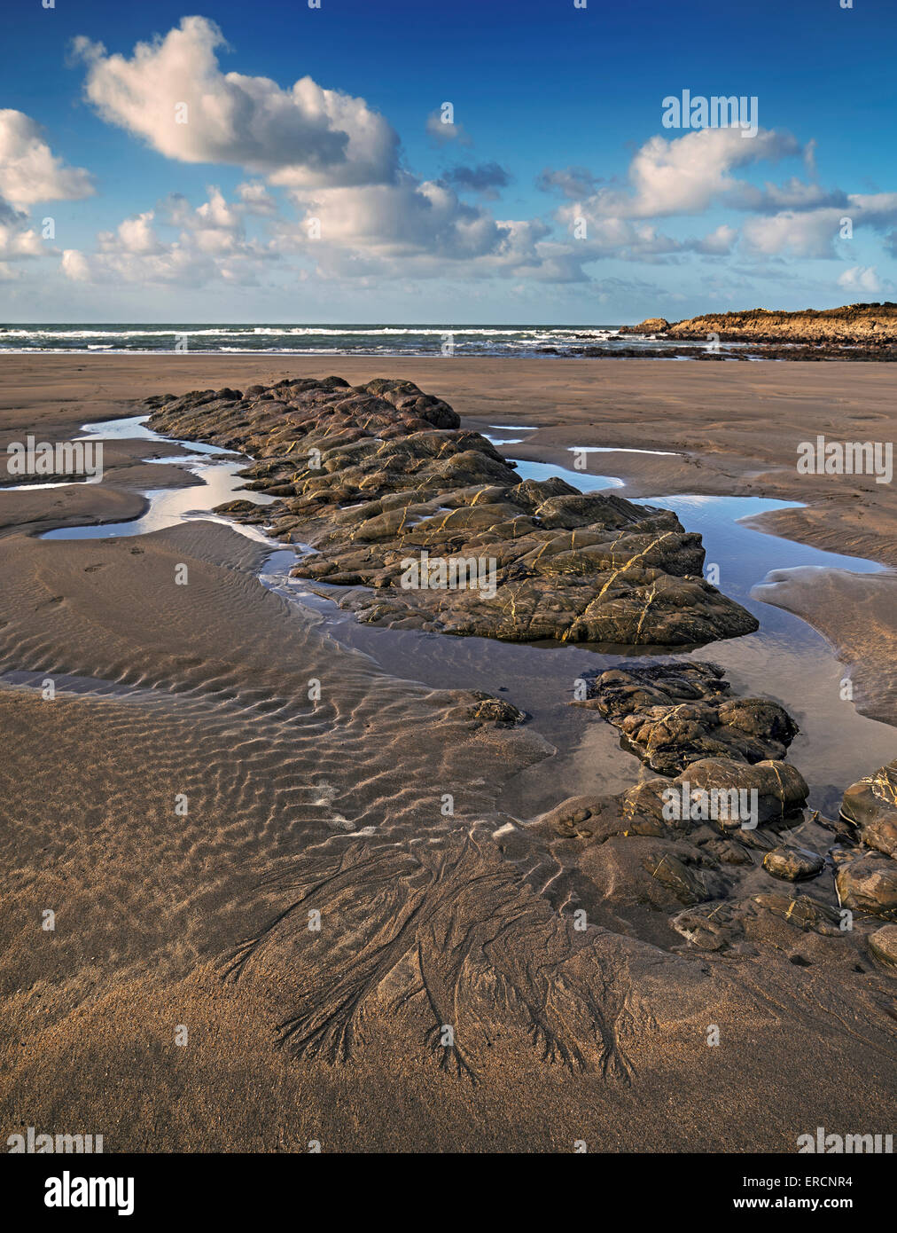 View of Crackington Haven beach at low tide - Stock Image