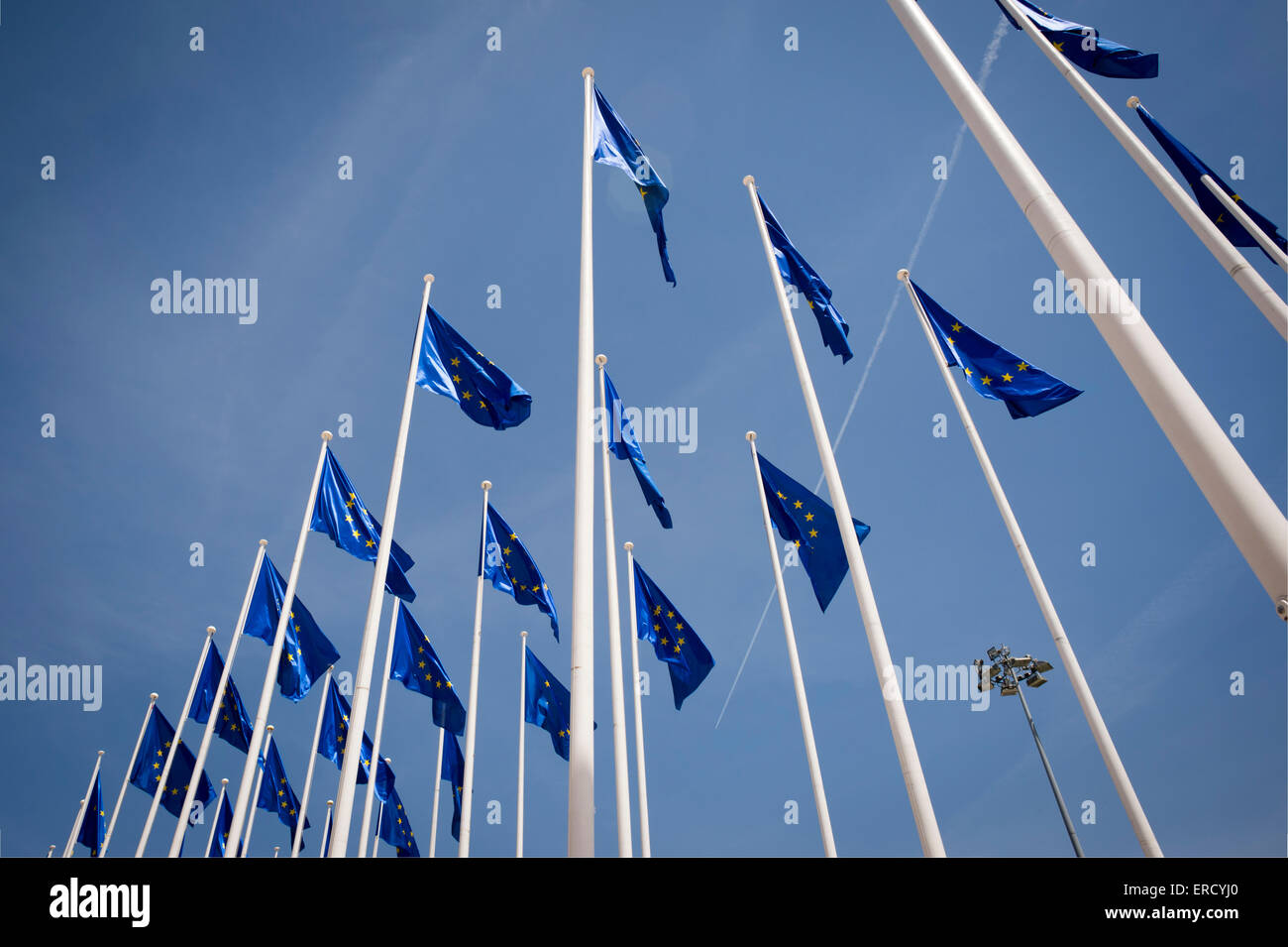 European Union flags flying - Stock Image