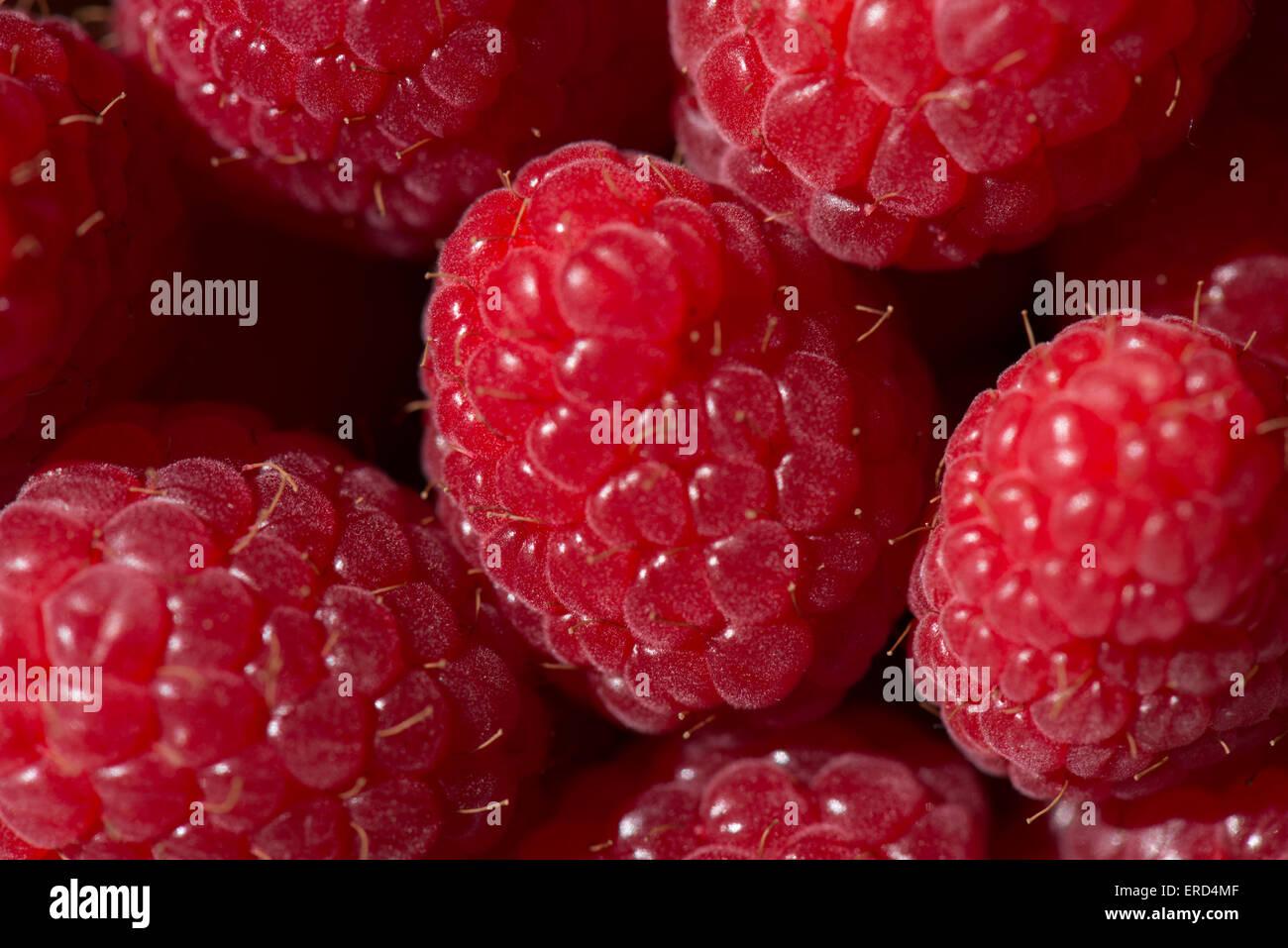 Raspberries, raspberry Stock Photo