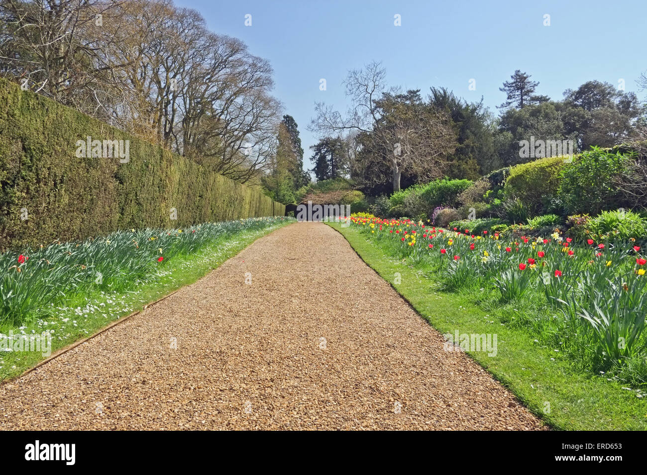 House Plants Low Light Gravel Path In Stately Home Garden United Kingdom Stock