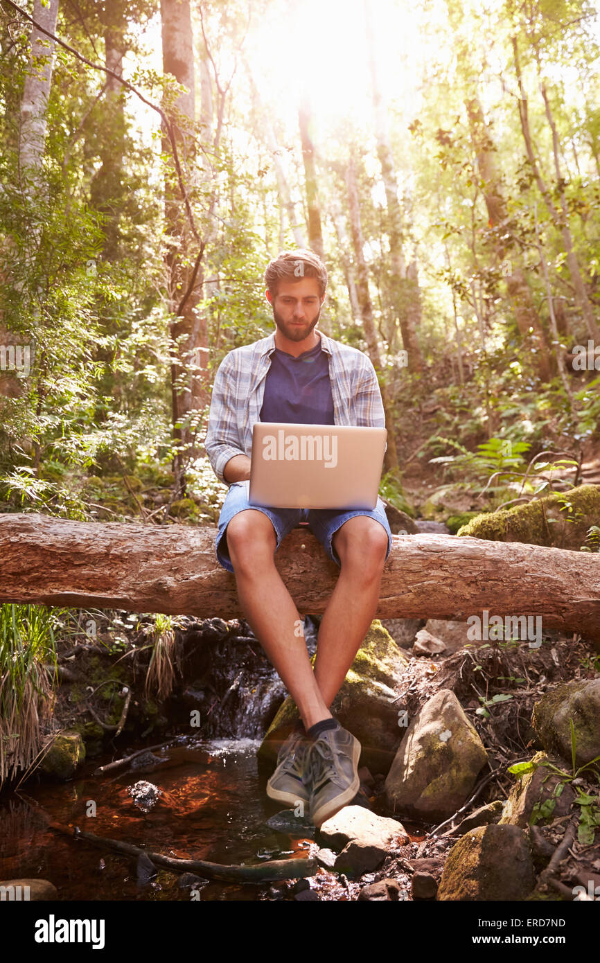 Man Sits On Tree Trunk In Forest Using Laptop Computer - Stock Image