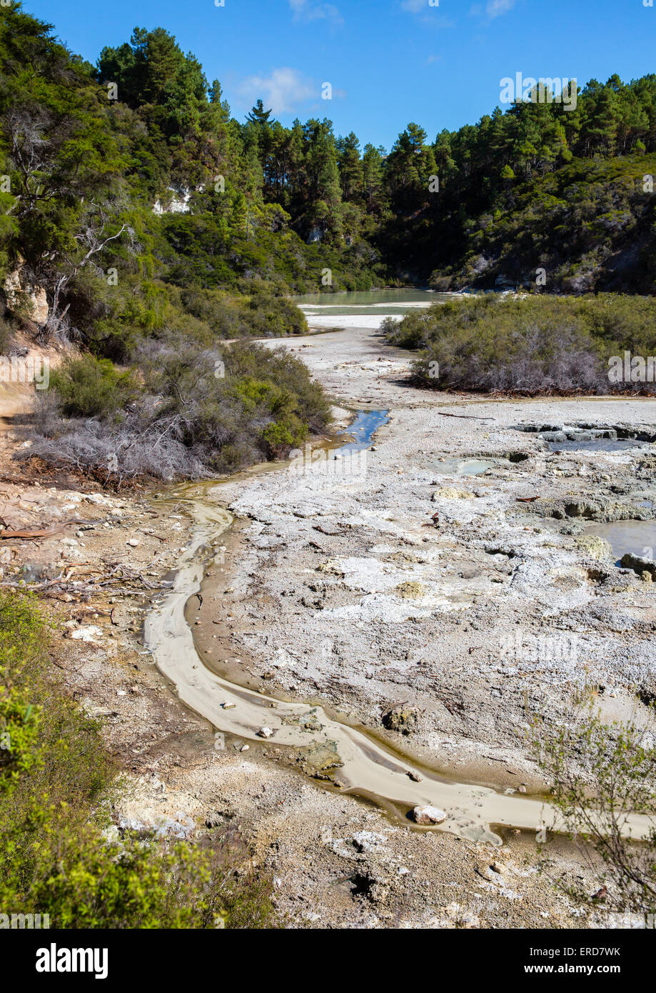 Volcanic springs and travertine pools at Wai o Tapu Thermal Wonderland in central North Island New Zealand - Stock Image