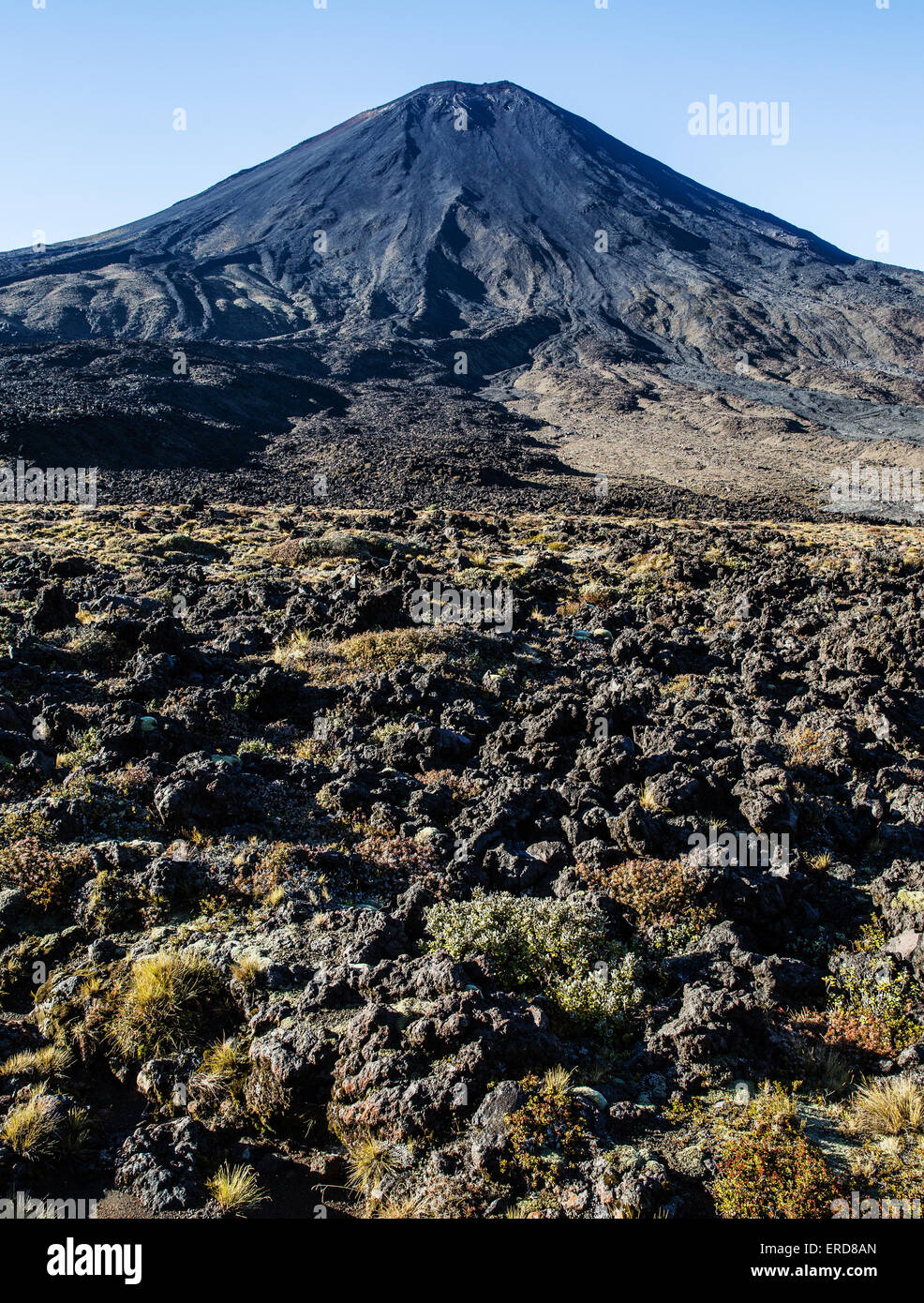 Brooding cone of active volcano Mount Ngauruhoe from the Tongariro Alpine Crossing in New Zealand's North Island - Stock Image
