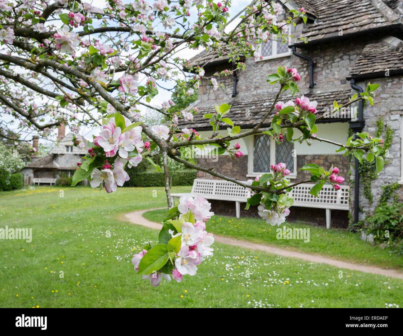 Diamond Cottage in spring at Blaise Hamlet - a Picturesque style group of nine cottages around a green designed - Stock Image