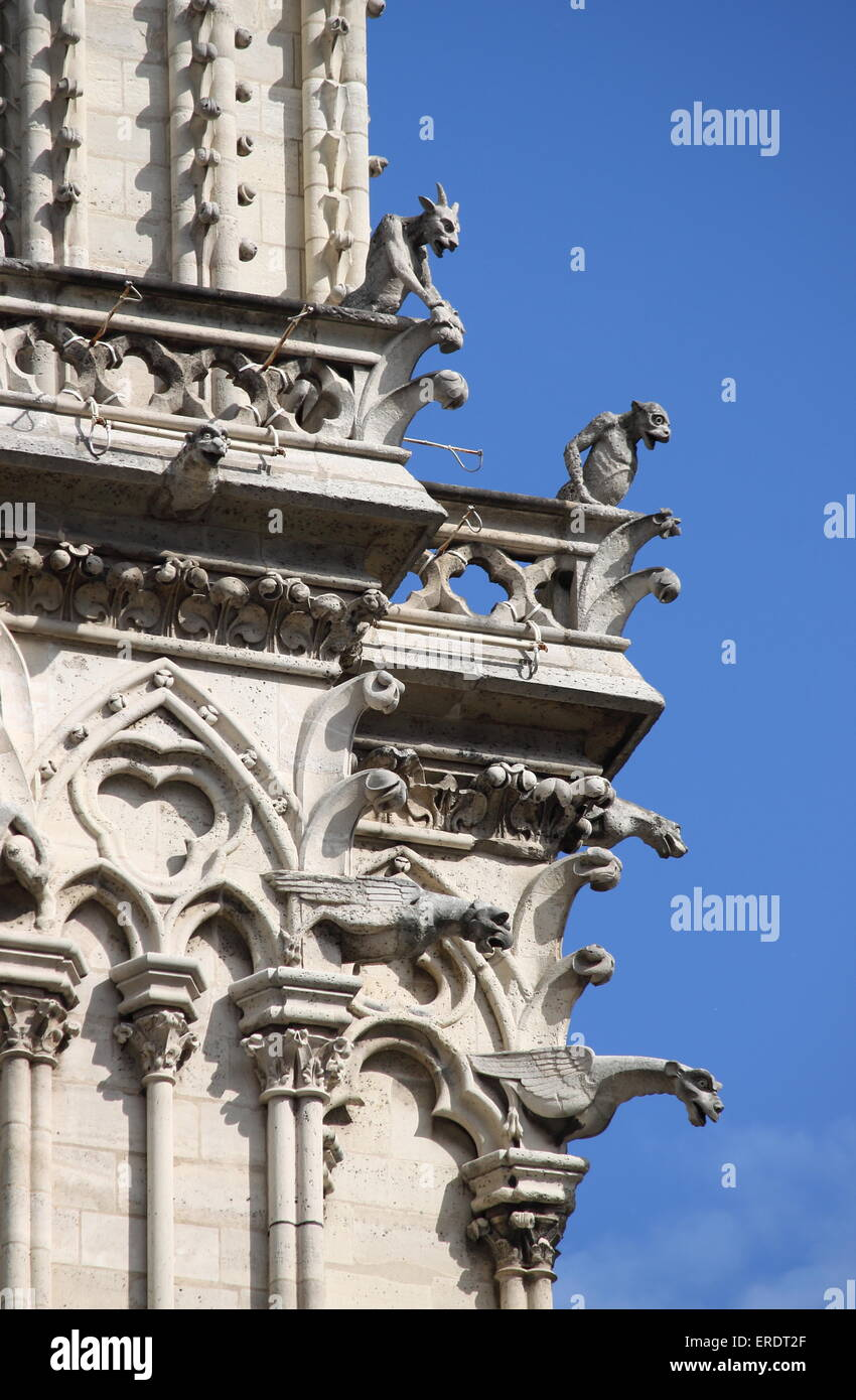 Gargoyles in Notre Dame Cathedral. Paris, France - Stock Image