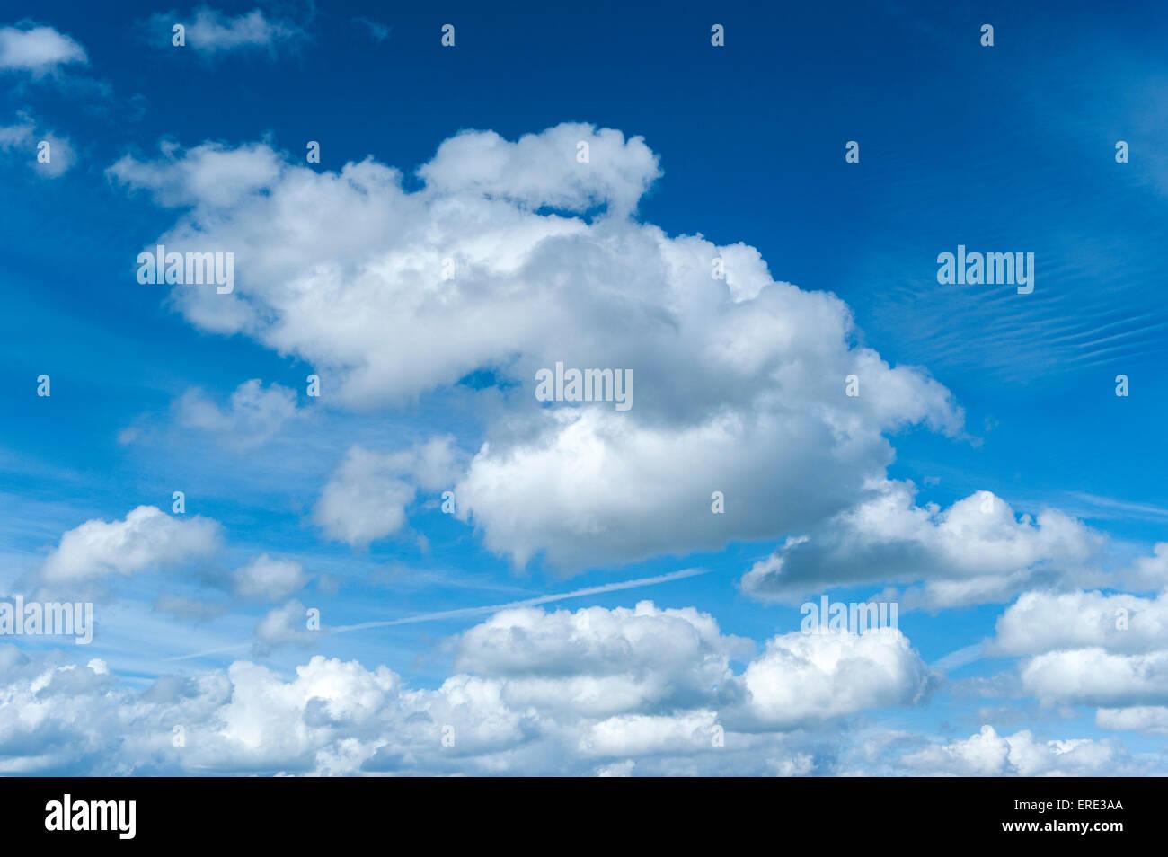 Cumulus clouds in a blue sky. UK - Stock Image