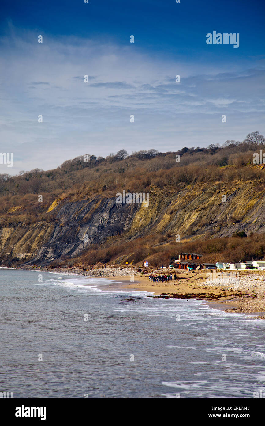 The unstable cliffs cause frequent landslips west of Lyme Regis on the Jurassic Coast  Dorset, England, UK - Stock Image