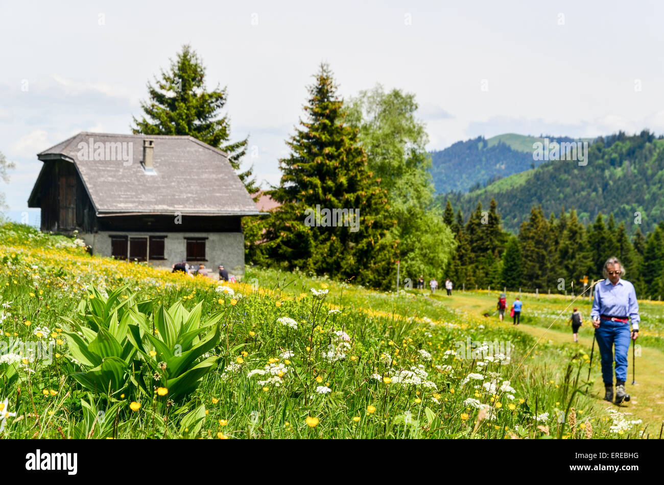 Hiker passing by a chalet house in the mountains of Switzerland - Stock Image