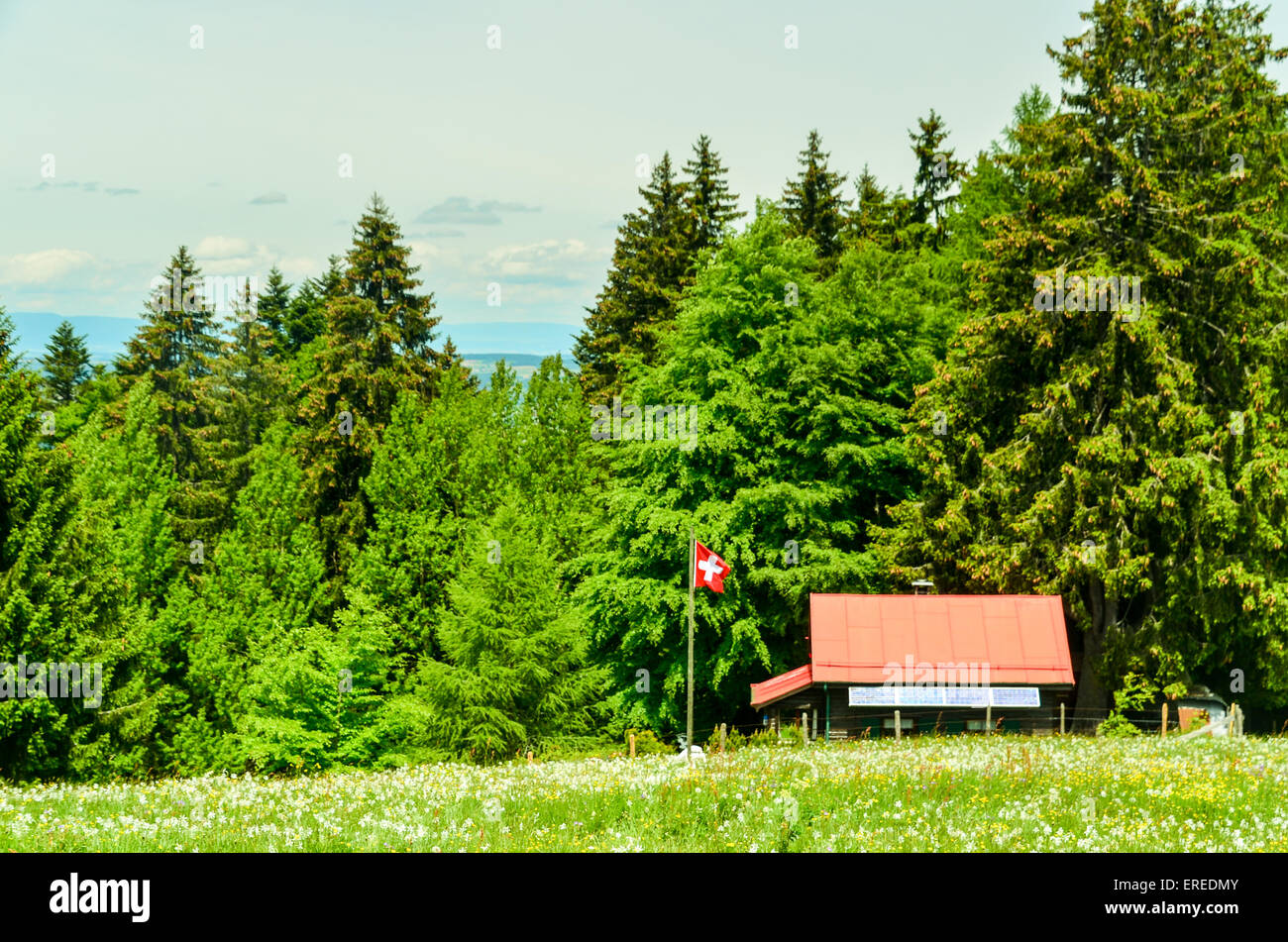 Swiss flag flying near a chalet in the Swiss mountains in summer - Stock Image