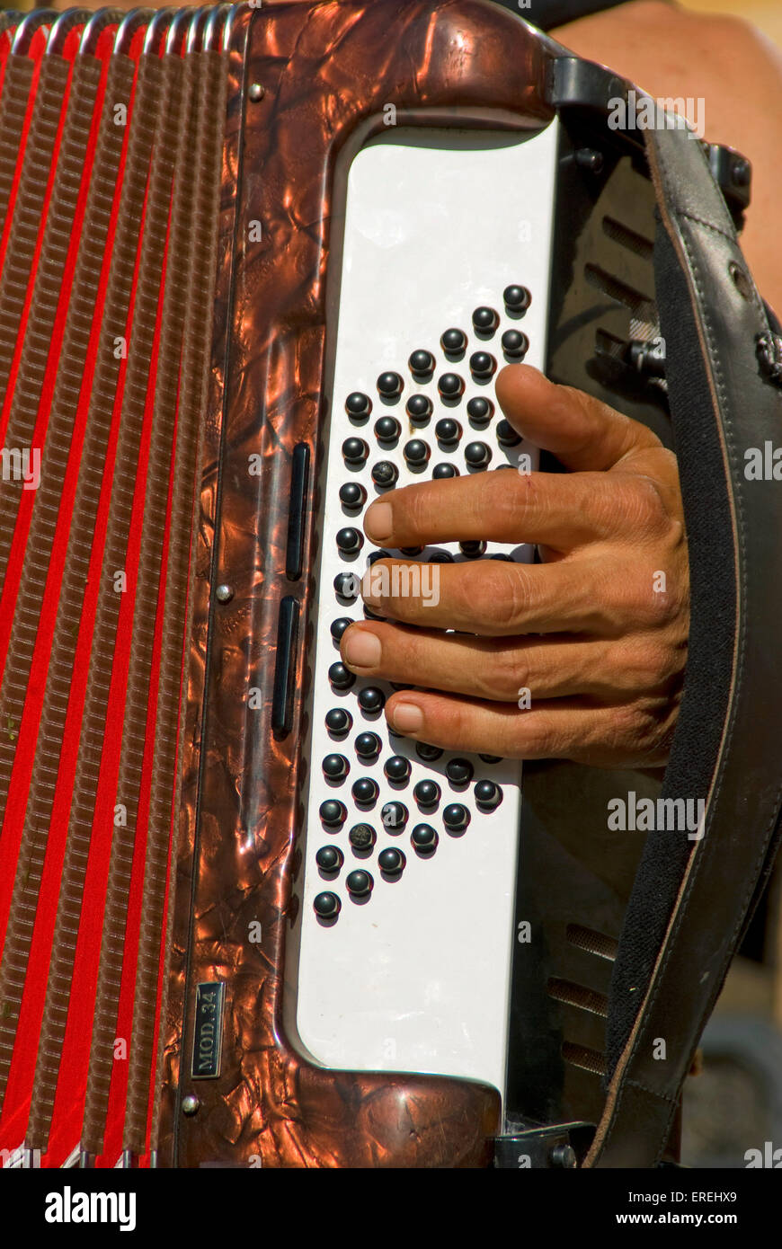 Close-up of accordionist's left hand, on buttons of piano accordion. - Stock Image