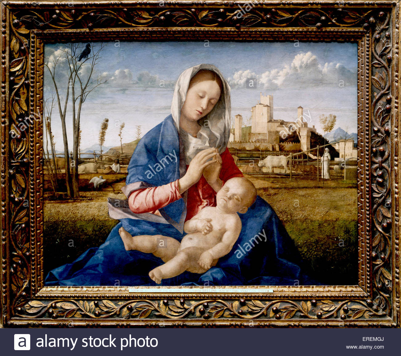 Madonna of the Meadow by Giovanni Bellini, circa 1500. Oil and egg on synthetic panel, transferred from wood, 67.3 - Stock Image
