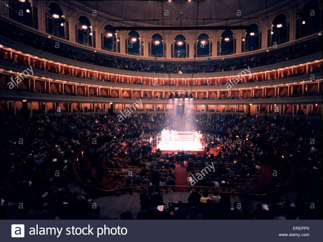 BBC Proms, Royal Albert Hall, London, UK. From stage, looking into amphitheatre. - Stock Image