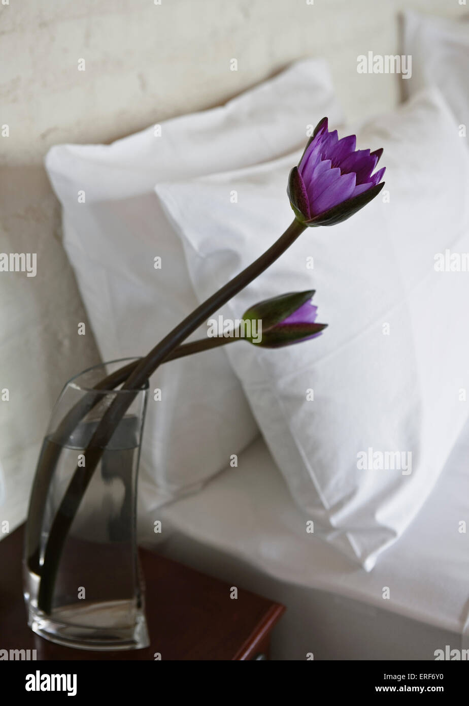Lotus Flowers In A Glass Vase Next To The Bed In The Grand Deluxe