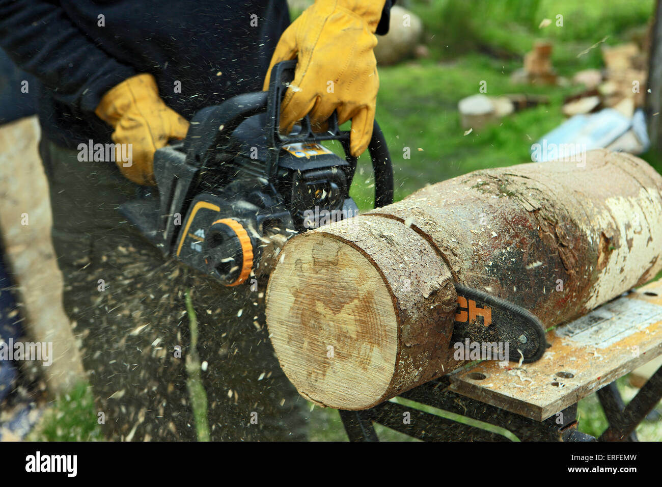 how to cut down a tree using a chainsaw