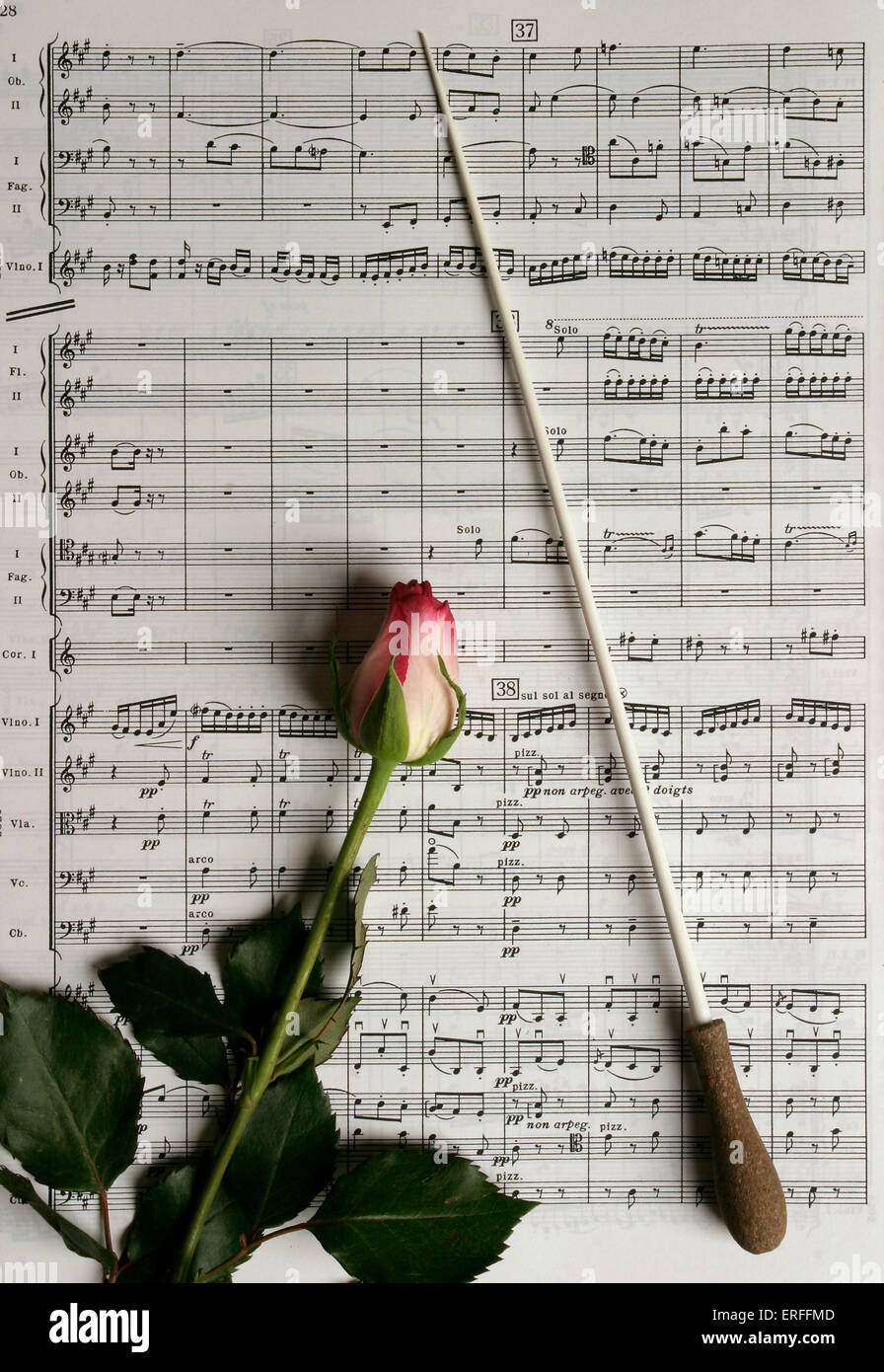 Score and baton with rose - Stock Image