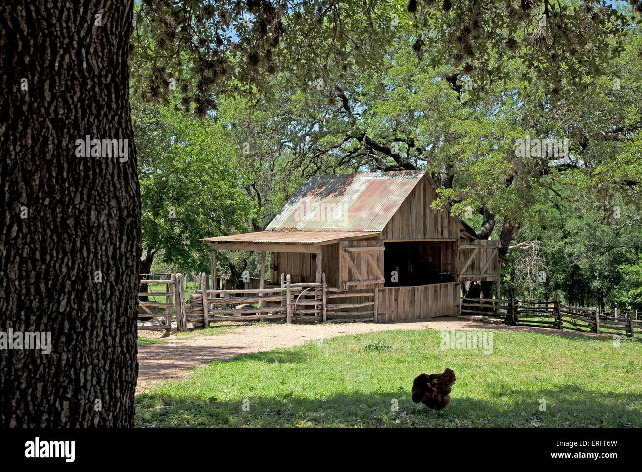 The blacksmith's shed at the Sauer-Beckman Living History Farm, circa 1915-18, at the LBJ State Park & Historic - Stock Image