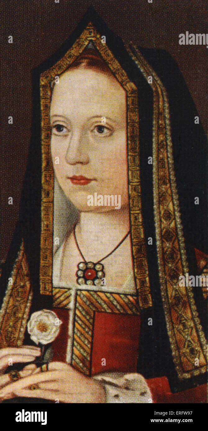 Elizabeth of York portrait (1465 - 1503). Elizabeth was the sister of the Princes in the Tower and eldest daughter - Stock Image