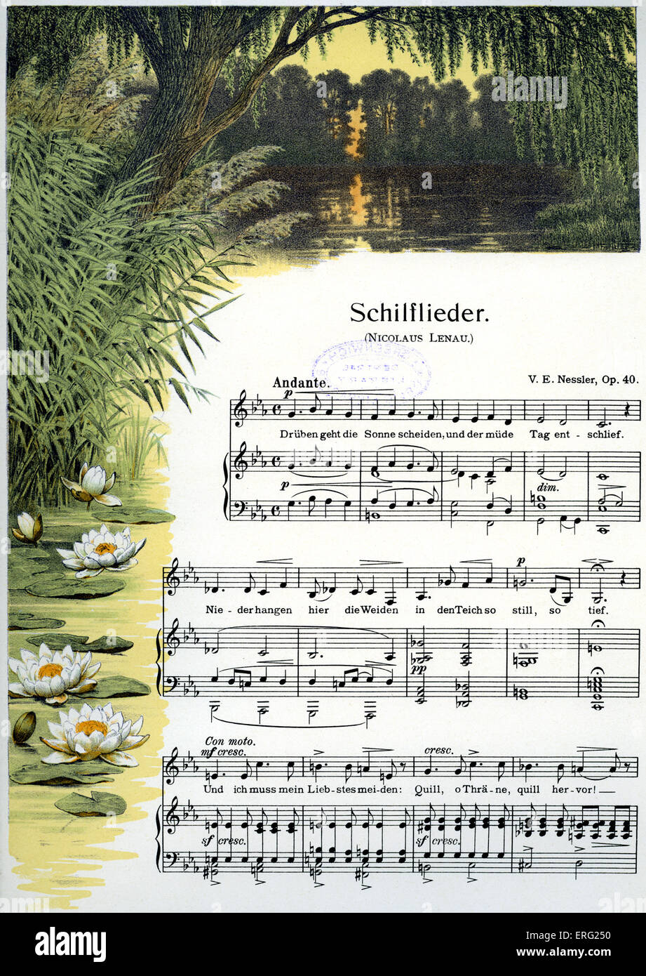 Reed song score.  Decorative surround to a musical setting of Nicolaus Lenau's poem. Stock Photo