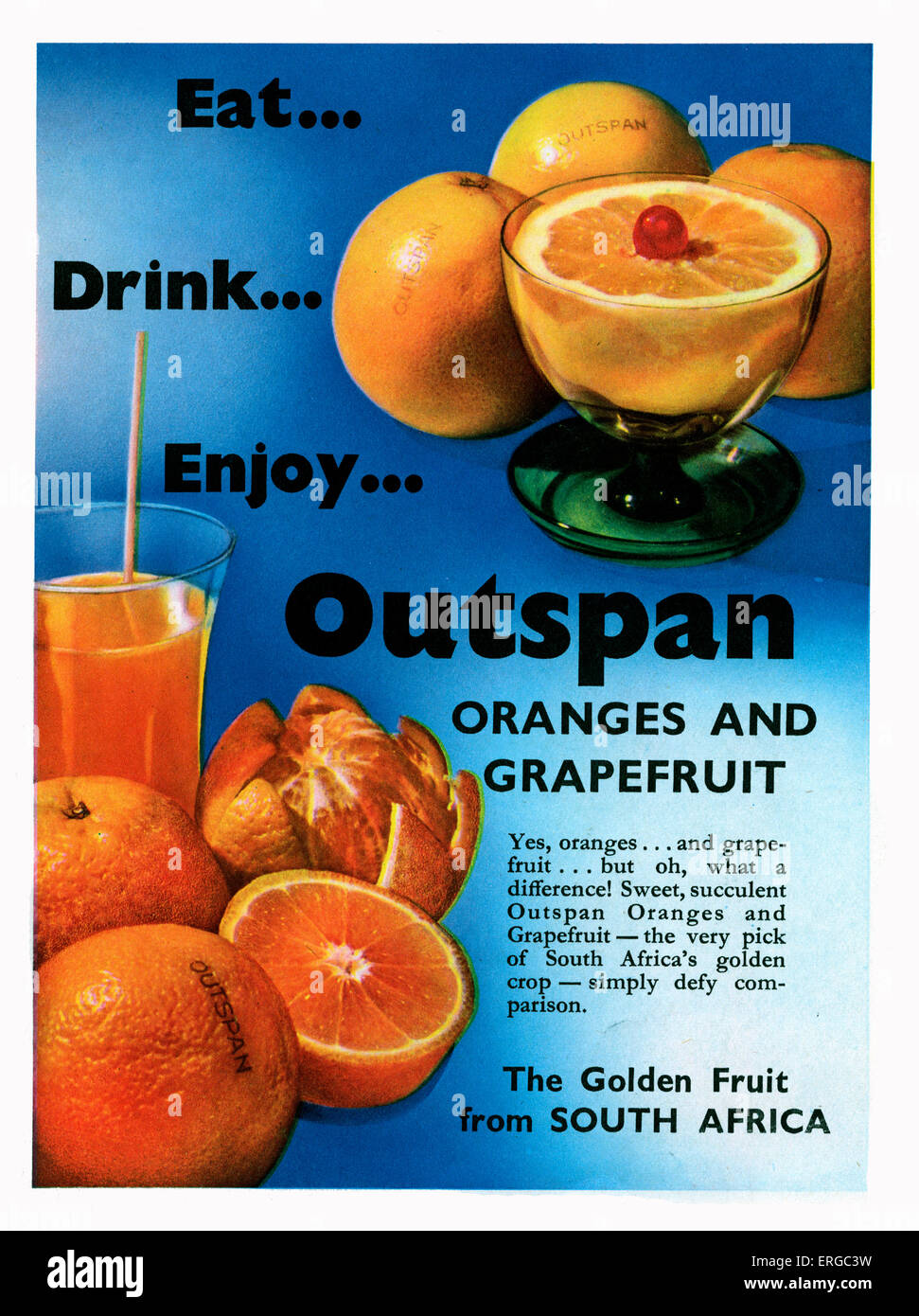Advertisement for Outspan Oranges and Grapefruit, 1950s. Caption:' Eat..drink..enjoy.. Outspan Oranges and Grapefruit…TheGolden Stock Photo