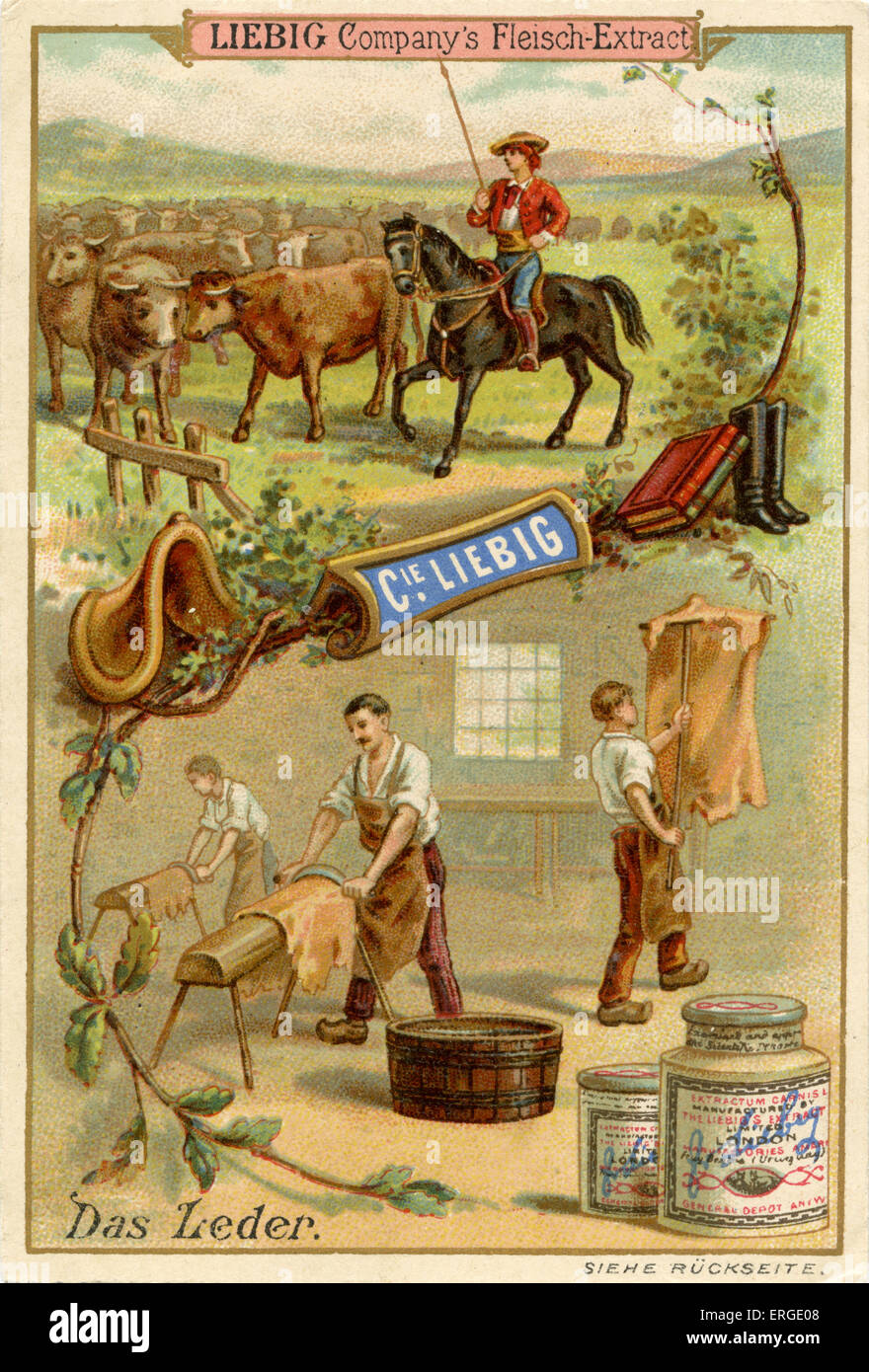 Leather ('Das Leder')  - Liebig Company collectible cards,  natural resources series. Published 1892. - Stock Image
