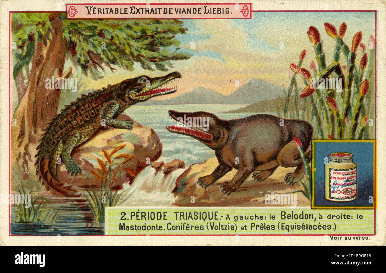 Geological Periods. Published 1892.  Triassic period ('Periode triasique'). Translation: 'Left: Belodon, - Stock Image