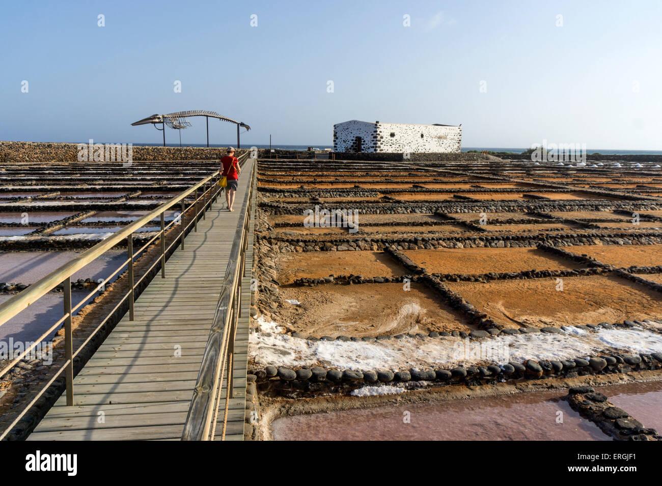 Saline in Caleta de Fuste, Fuerteventura Spain - Stock Image