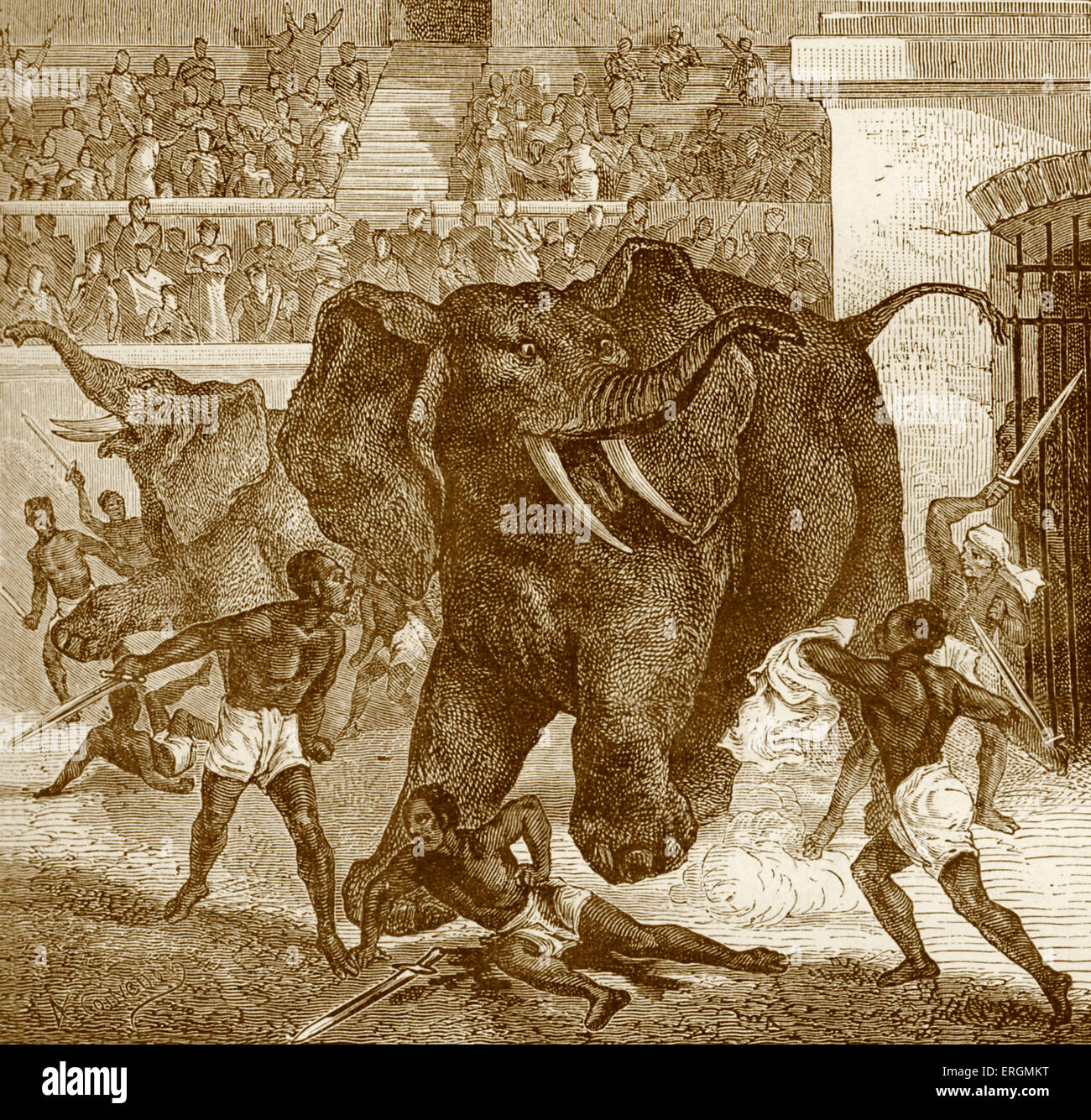 Games at Circus Maximus in Ancient Rome. Black prisoners/captives fighting elephants. Chariot racing stadium. - Stock Image