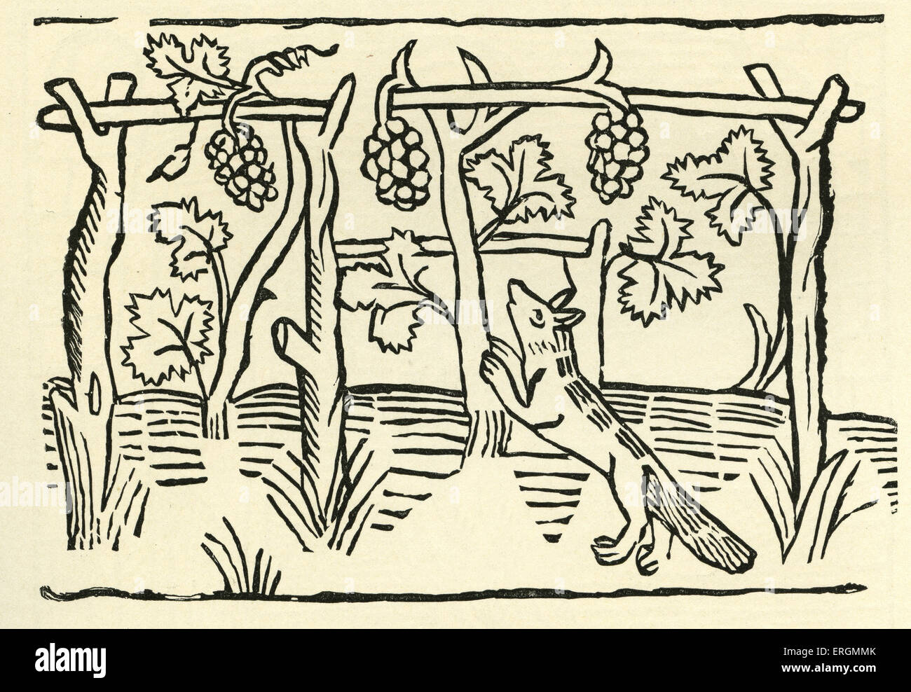 The Fox and Grapes from Caxton's 'Aesop'. In this fable, the fox covets grapes which he cannot have, - Stock Image