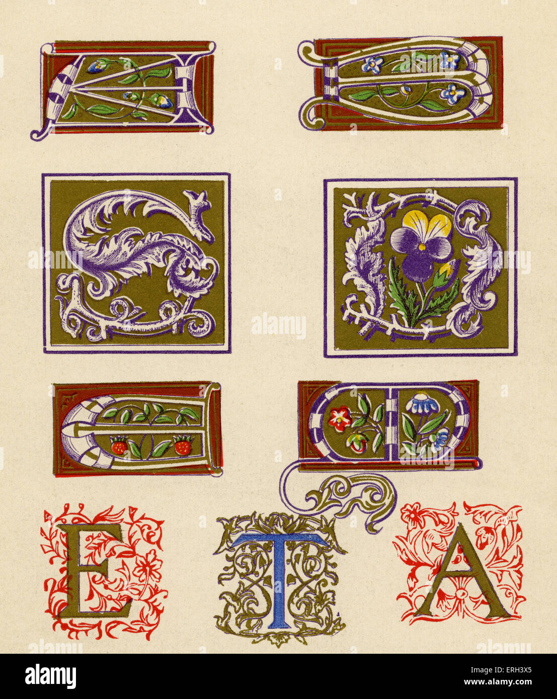 Sixteenth century illuminated letters A, B, S, D, E, M and T.  (1886 source). - Stock Image