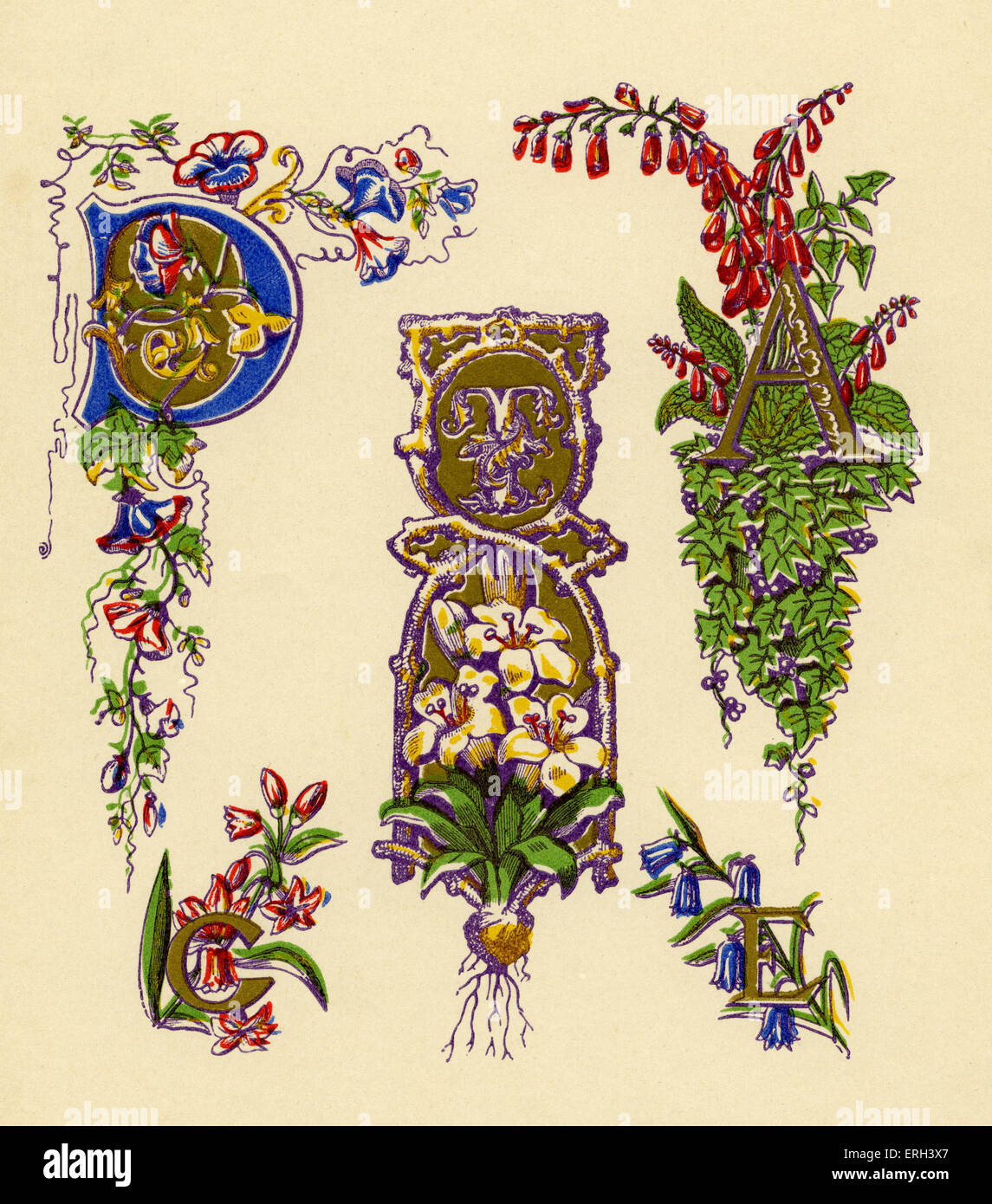 Illuminated letters D, T, A, C and E. Sixteenth century style.  (1886 source.) - Stock Image