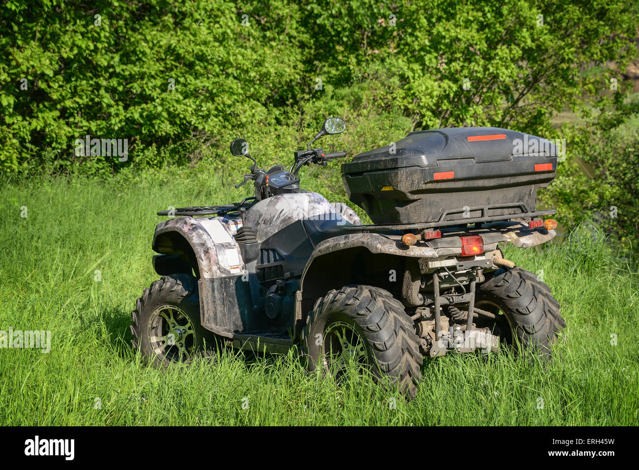 4x4 ATV in the forest at sunny day - Stock Image