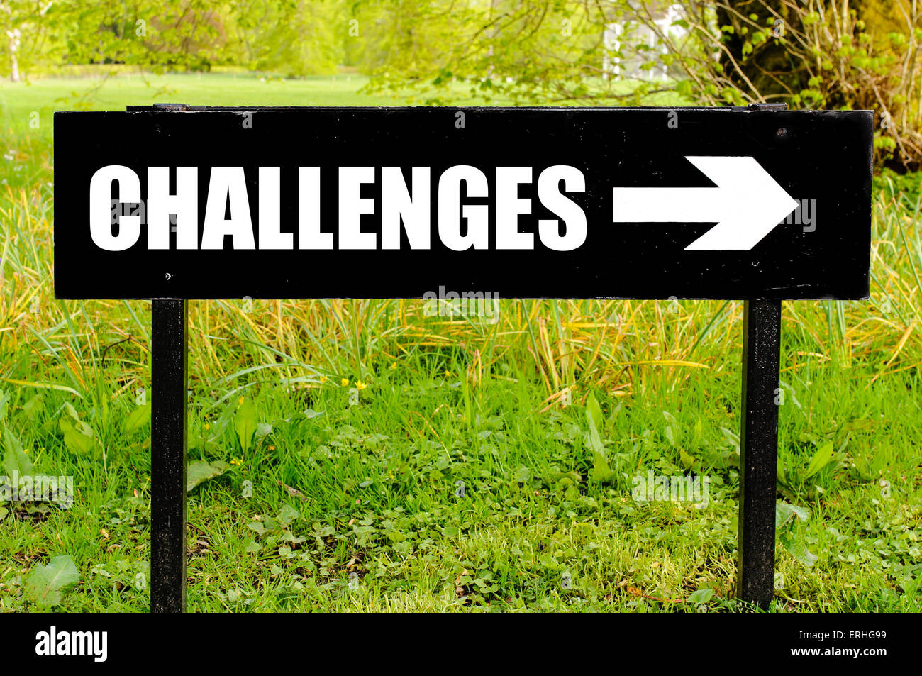 CHALLENGES written on directional black metal sign with arrow pointing to the right against natural green background. - Stock Image