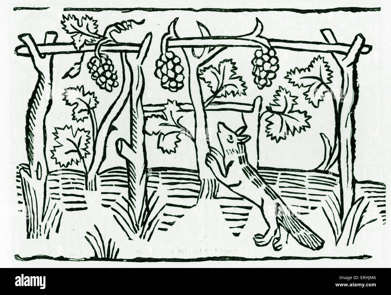 Aesop 's fable The Fox and The Grapes - illustration of the fox trying to reach the grapes. From Caxton 's - Stock Image