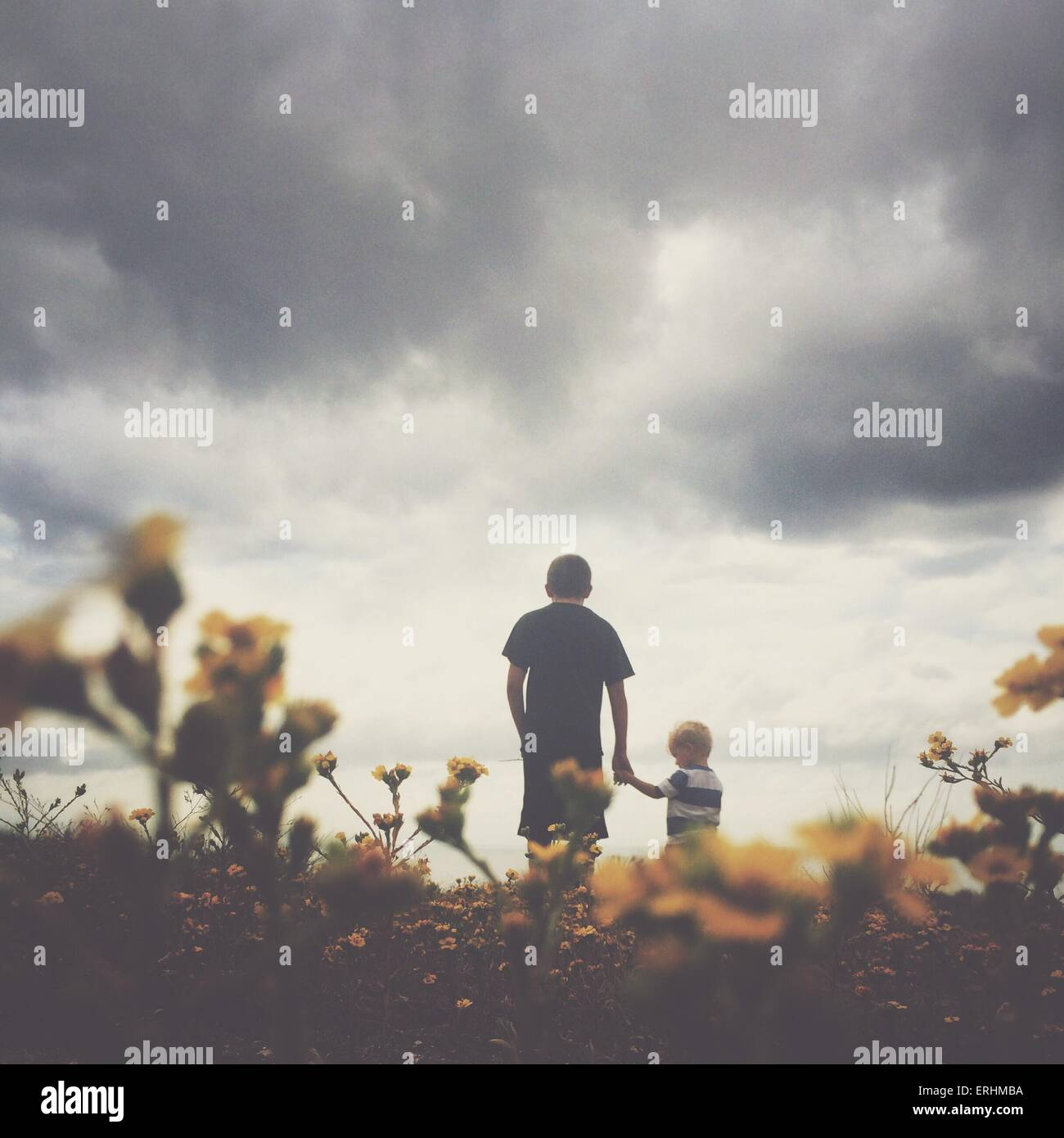 Rear view of two boys holding hands - Stock Image