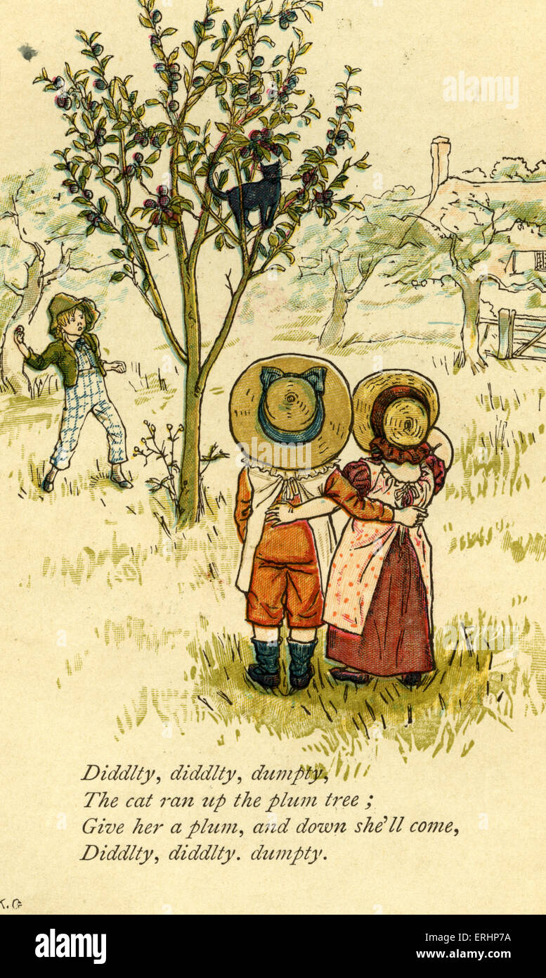 Diddlty, diddlty, dumpty nursery rhyme illustrated by Kate Greenaway. Cat stuck up a plum tree. English children - Stock Image