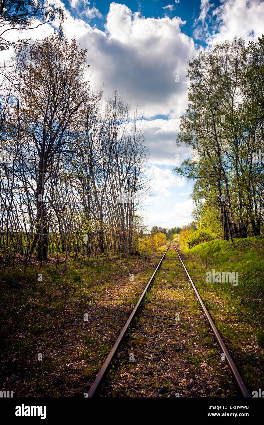 Railroad track in the forest - Stock Image