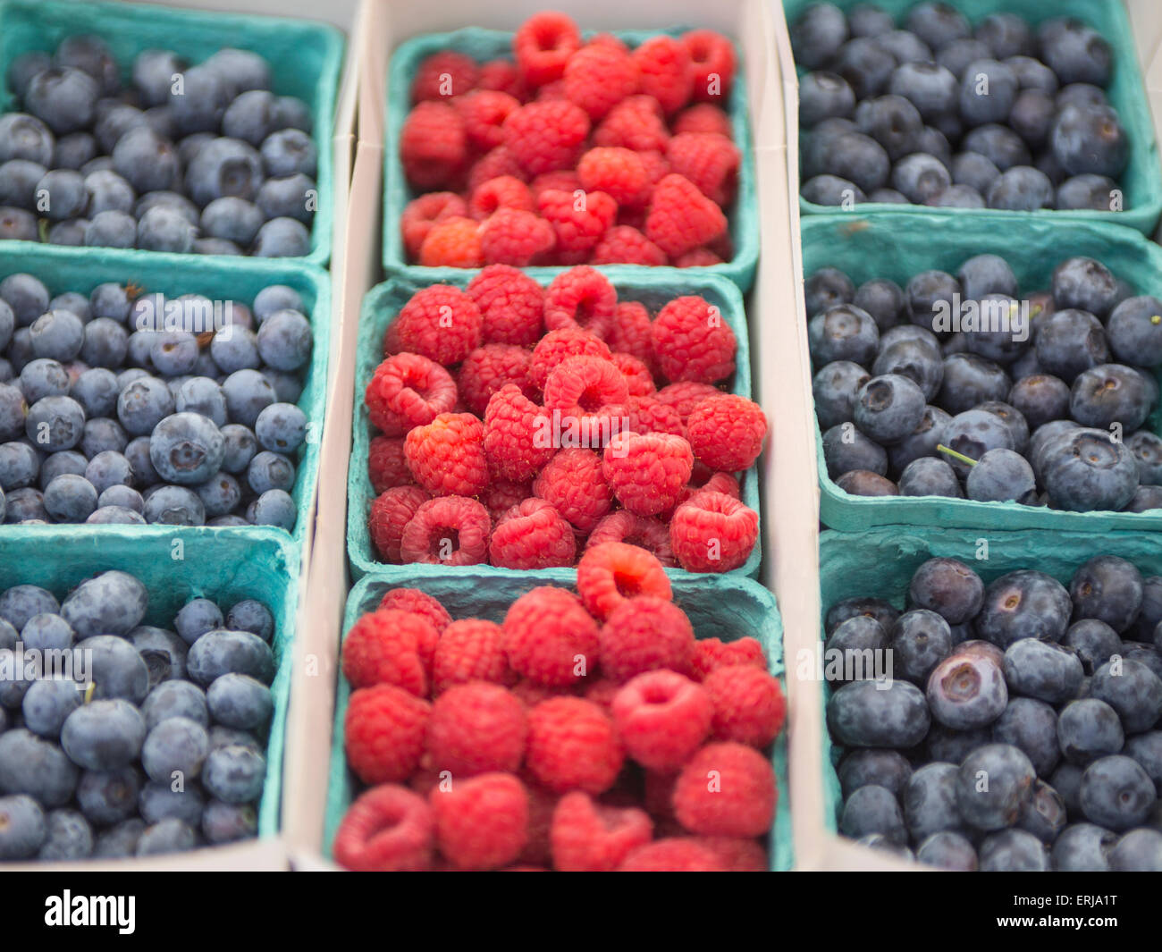 Raspberries and Blueberries - Stock Image