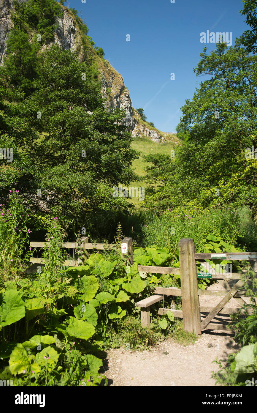 UK, England, Derbyshire, Dovedale, stile on path beside River Dove - Stock Image