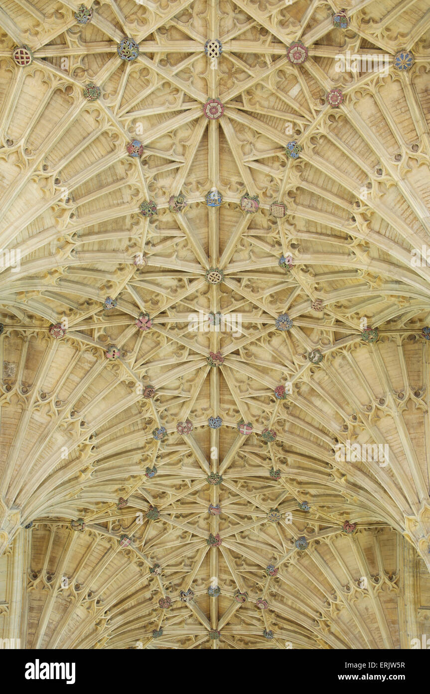 The magnificent Gothic fan vaulted ceiling of Sherborne Abbey with its intricate pattern of intersecting ribs. Dorset, - Stock Image