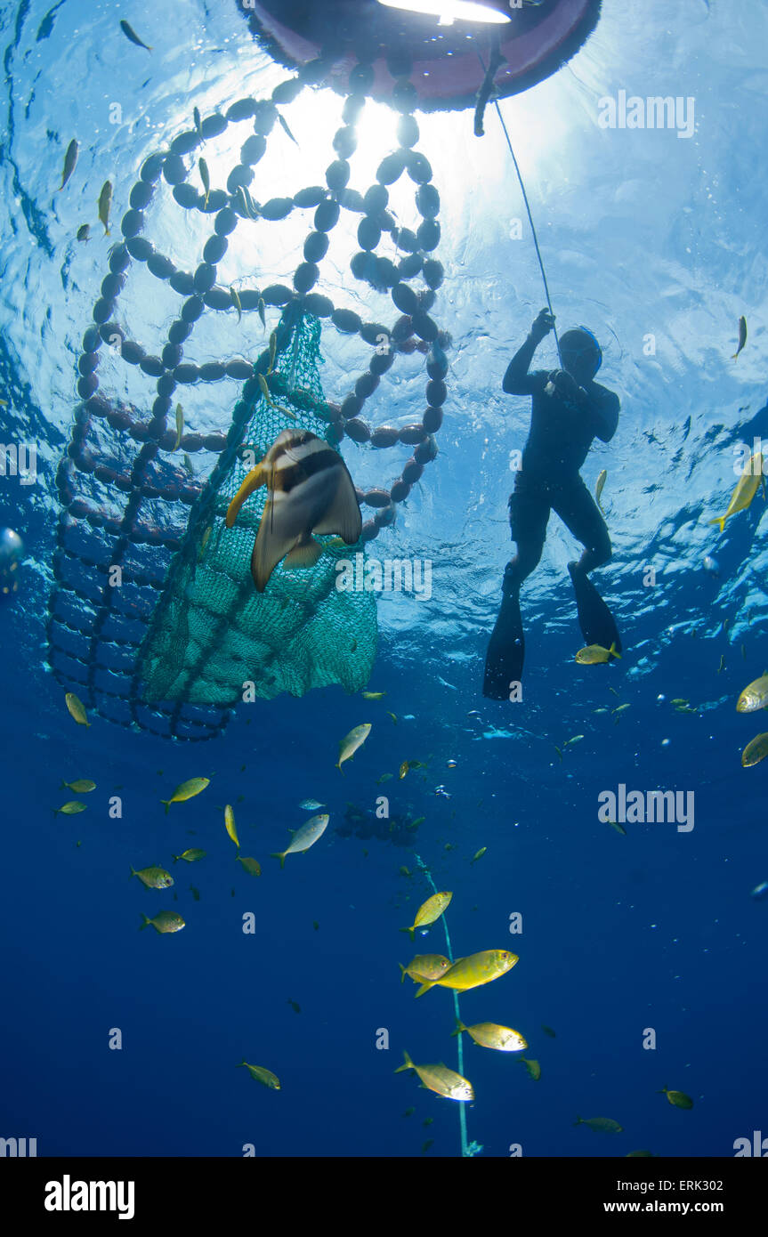 Fish Aggregation Device, with worker, South Male Atoll, Maldives - Stock Image