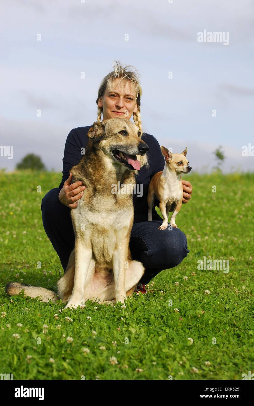 woman with dogs - Stock Image