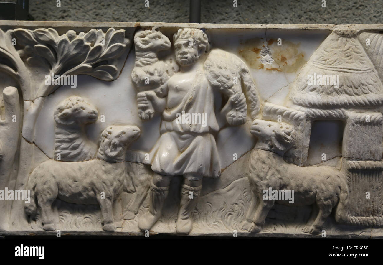 Roman sarcophagi. Fragment. Shepherd between rams. Unknown. End of the 3rd C. AD. Vatican Museums. - Stock Image