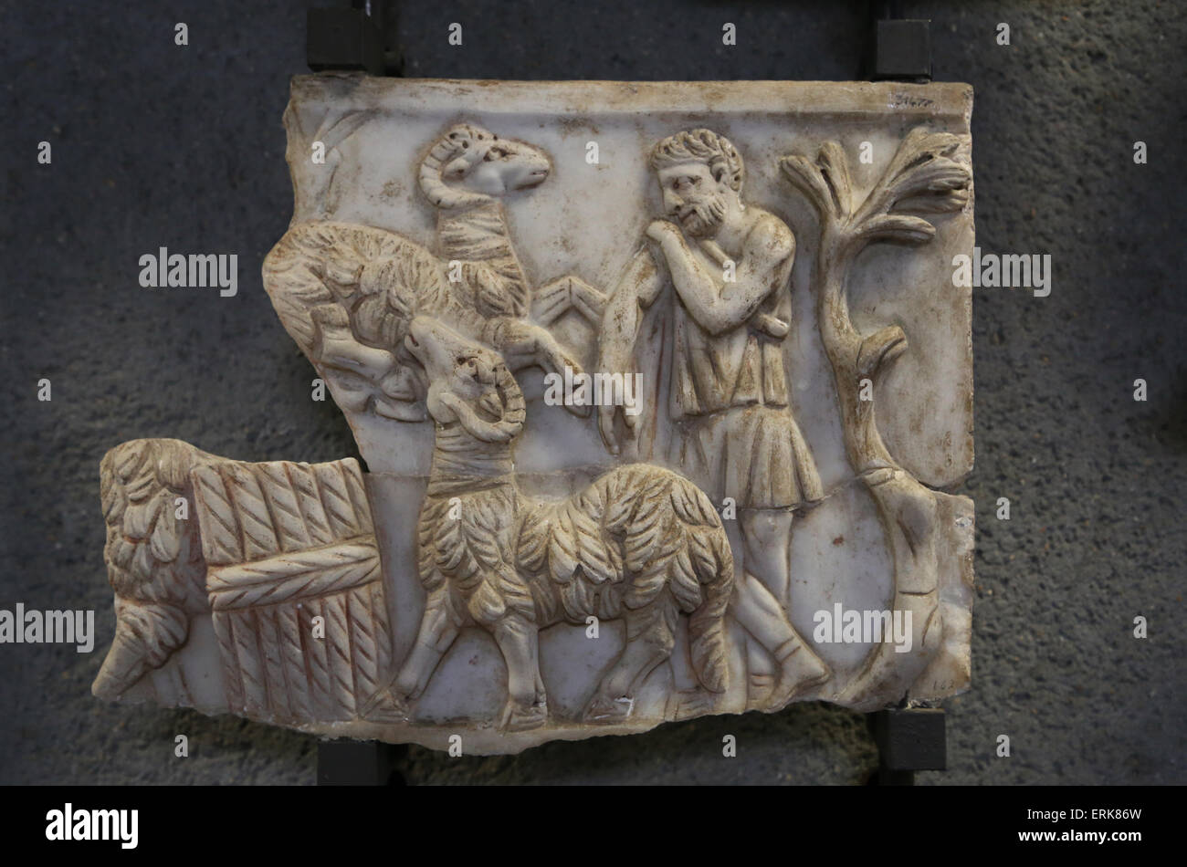 Early Christian. Roman sarcophagi. Shepherd between rams. Unknown. 3rd- 4th C. AD. Vatican Museums. - Stock Image