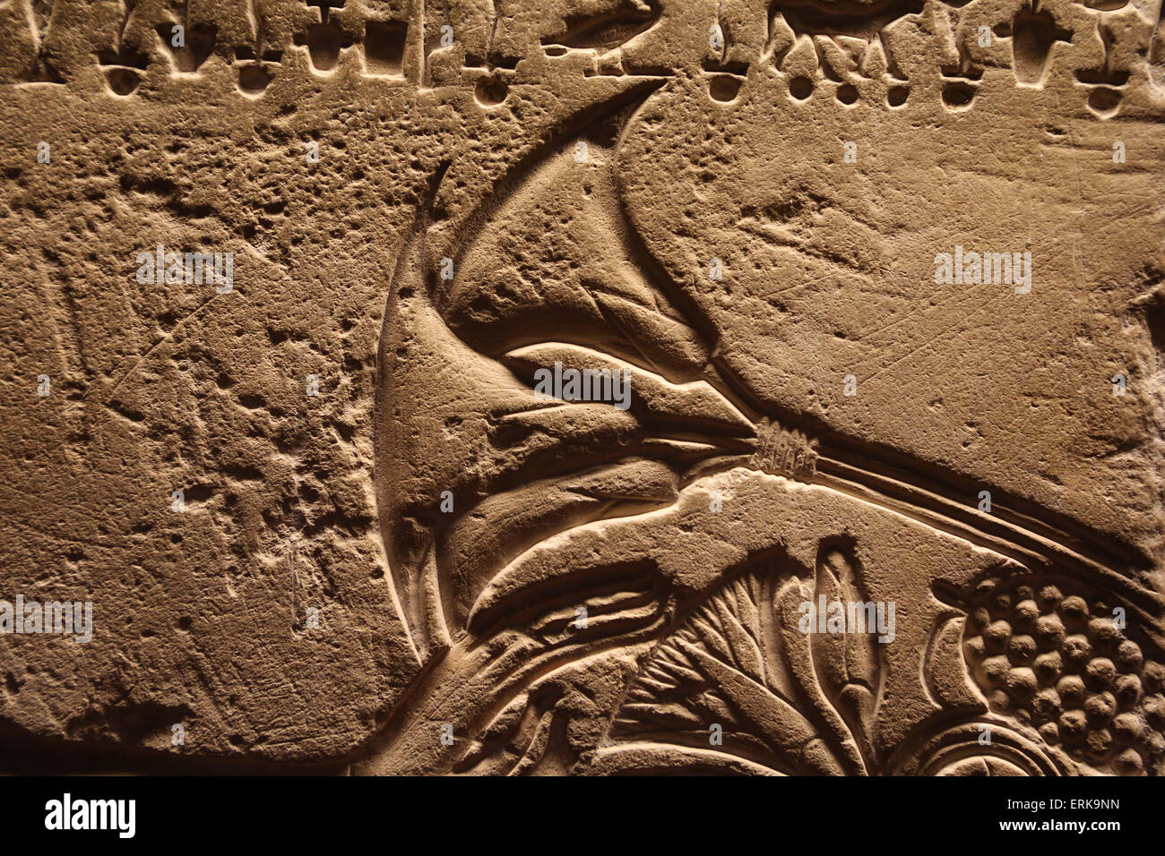 Egyptian lotus flower stock photos egyptian lotus flower stock ancient egypt relief lotus flower vatican museums stock image mightylinksfo