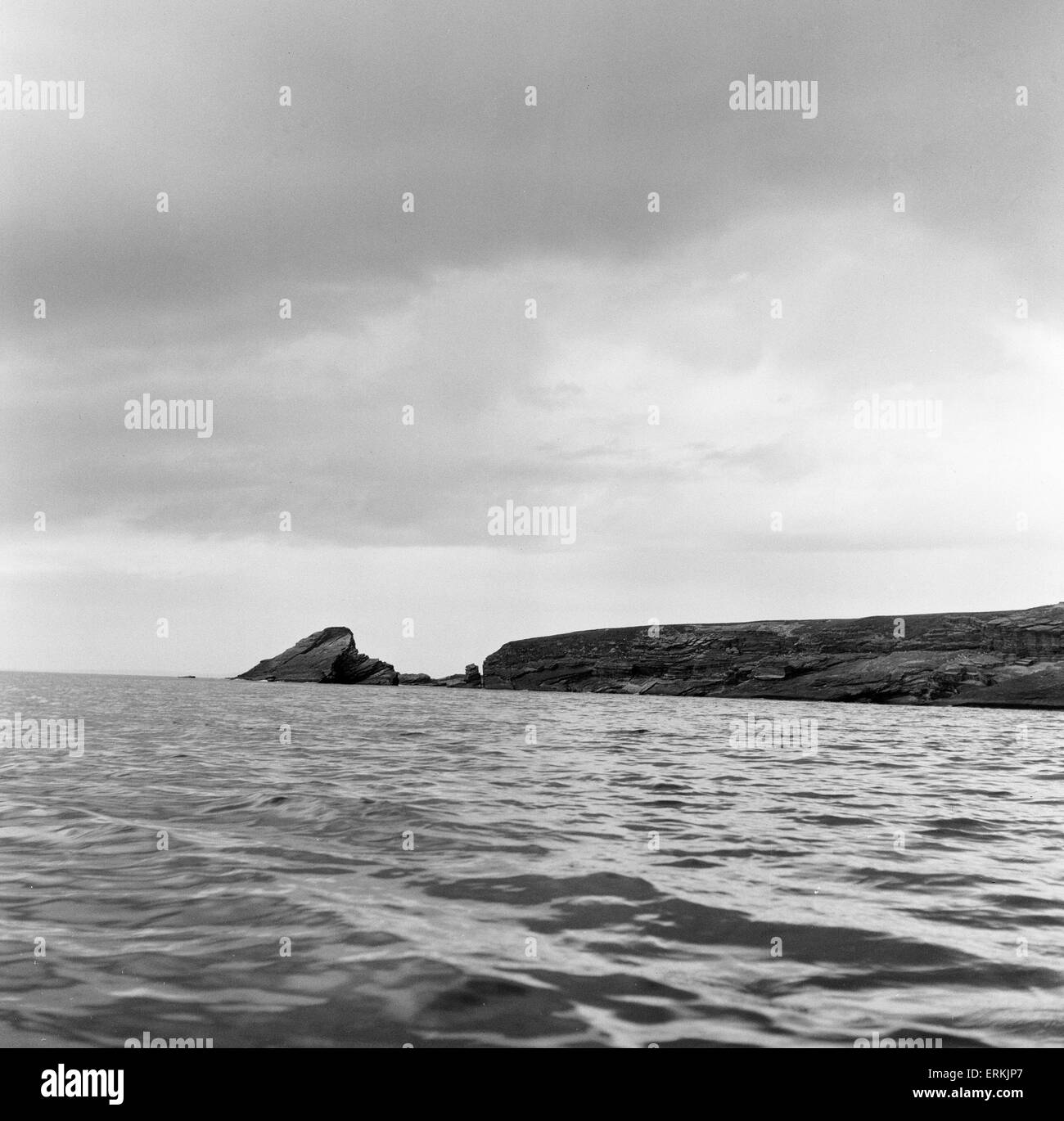 The Island of Swona in the Pentland Firth off the north coast of Scotland. 18th May 1957. Home to Violet Rosie, - Stock Image