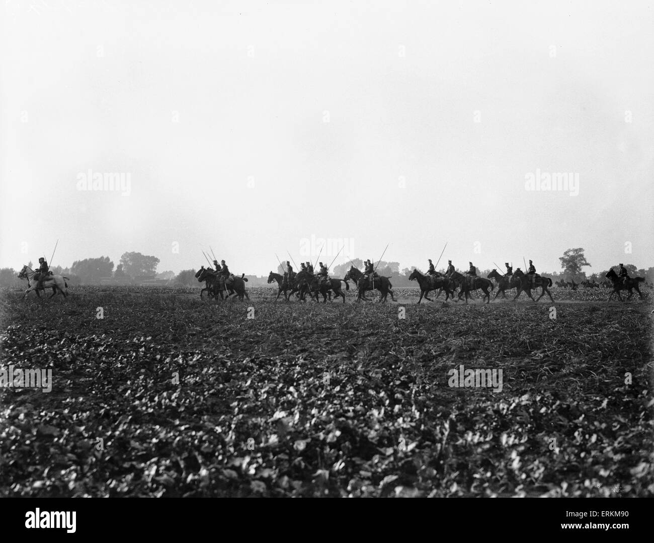 Belgian cavalry seen here in operation close to Hofstade 28th September 1914 - Stock Image